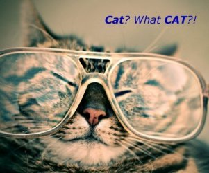 CAT tools – how we save your money